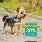Puppy Health Care 1 Year Plan